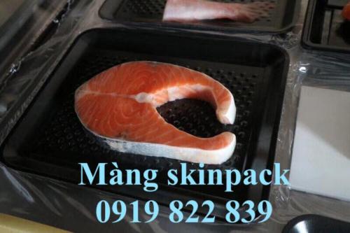 màng skinpack